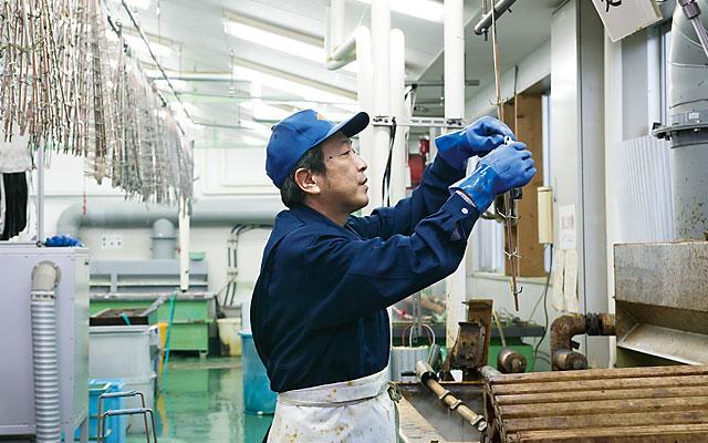 hirata-shashin